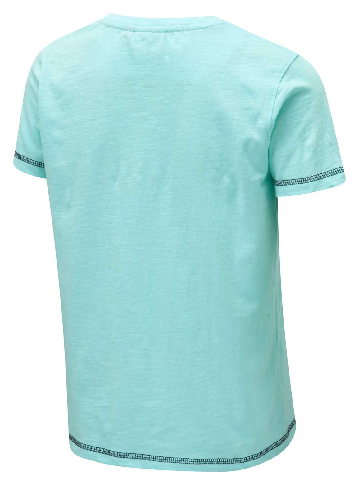 Reef Graphic Print T Shirt Aqua
