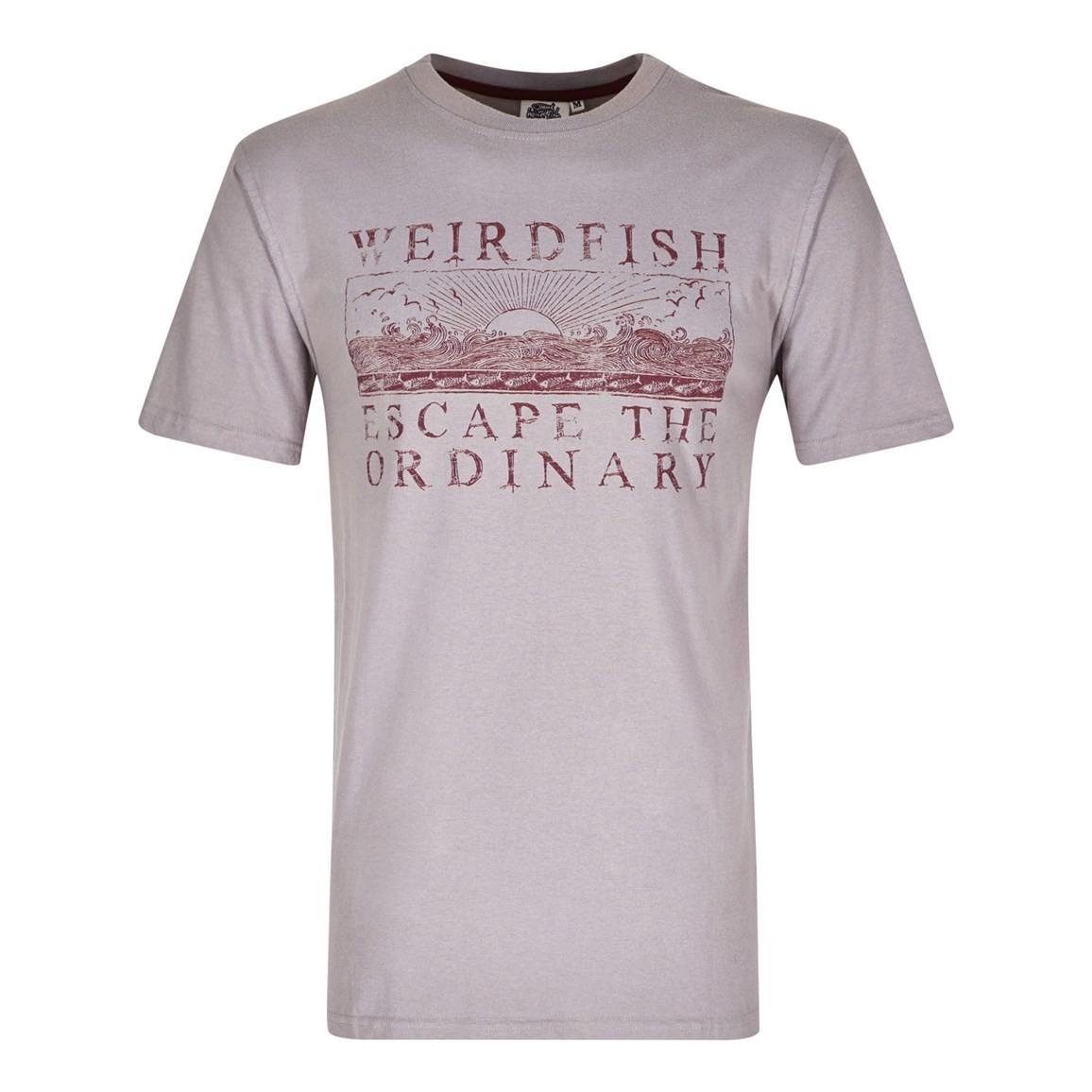 Weird Fish Raziel Branded Graphic Print T-Shirt Frost Grey Size 2XL