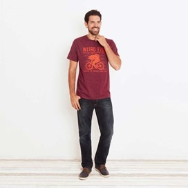 Fish Cycle Graphic Print T-Shirt Dark Wine Marl