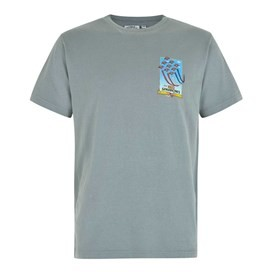 Red Sparrows Artist T-Shirt Grey Blue