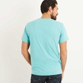 Sardines Graphic Print T-Shirt Menthol Marl