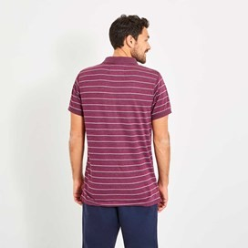 Belsay Stripe Polo Wine