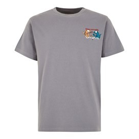 Fished As A Newt Artist T-Shirt Grey