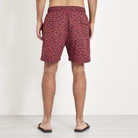 Barona Printed Board Shorts Paprika