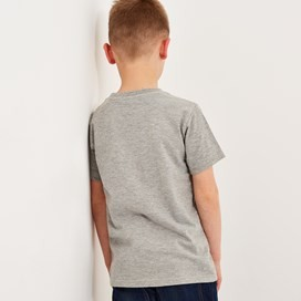 Shoal Graphic T-Shirt Grey Marl