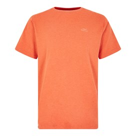 Fished Branded T-Shirt Dark Rust Marl