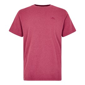 Fished Plain Branded T-Shirt Malaga Marl