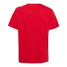 Carp Side Of The Moon Artist T-Shirt Mars Red