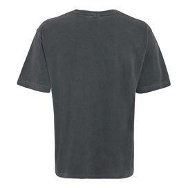 Ramon Graphic T-Shirt Grey