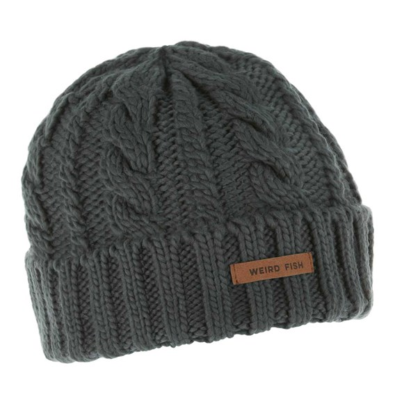Denver Cable Knit Beanie Blueberry